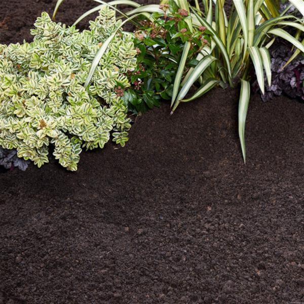 ProBlend Multi-purpose Soil