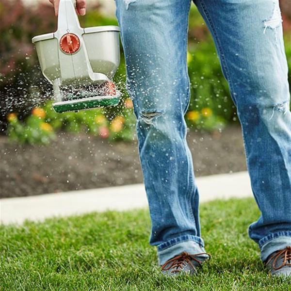 ProBlend Soil Improver